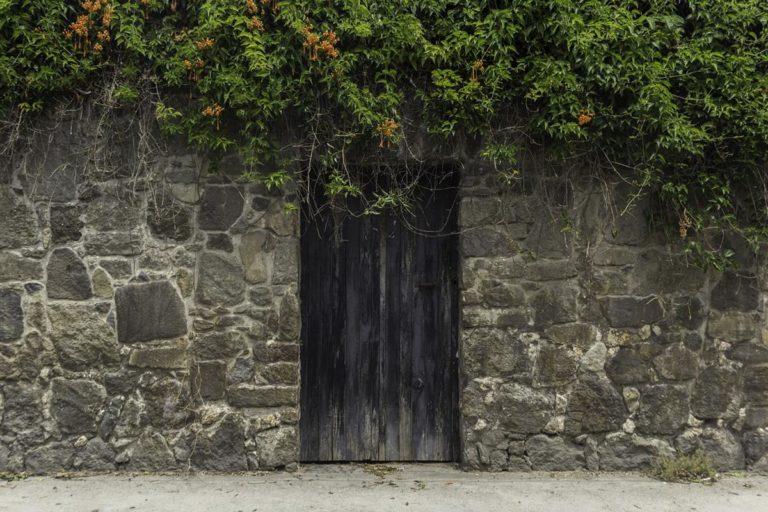 Drzwi drewniane, dlaczego warto wybrać właśnie to rozwiązanie?